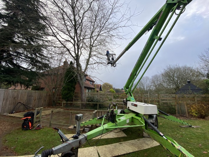Dr Stump Arboriculture with Niftylift